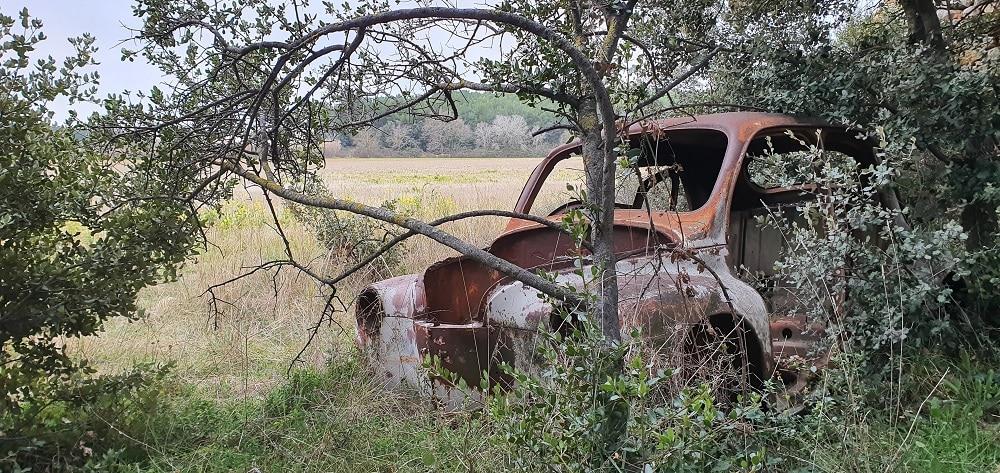 voiture abandonnée dans un champs